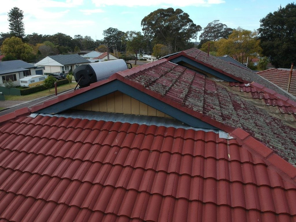 east coast building and pest services roof fungal inspection using drone